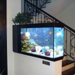 Дизайн аквариума фото.