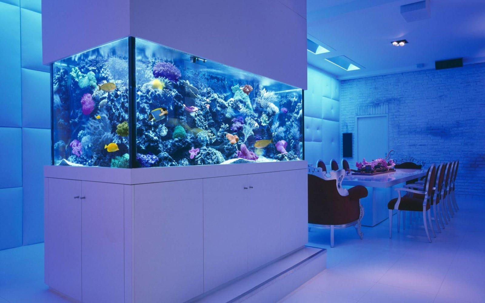 Krasivyy-akvarium-v-gostinnoy(oboibox.ru)