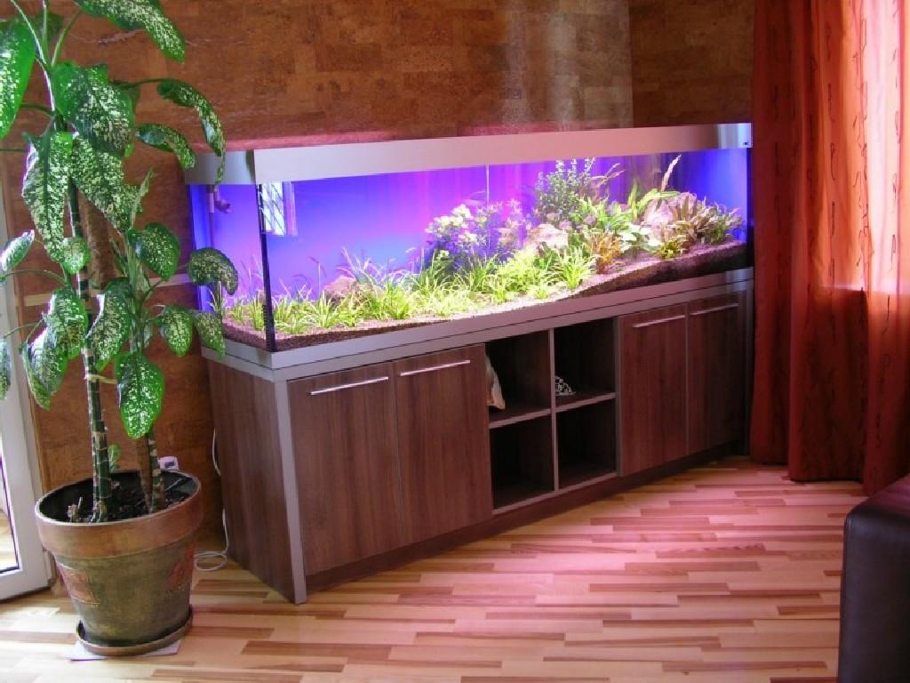Установка и запуск аквариума