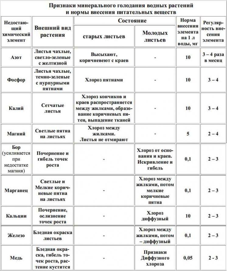 1142_bgcsb-spbus-isnbci-iclbsya-buebsix-byo...
