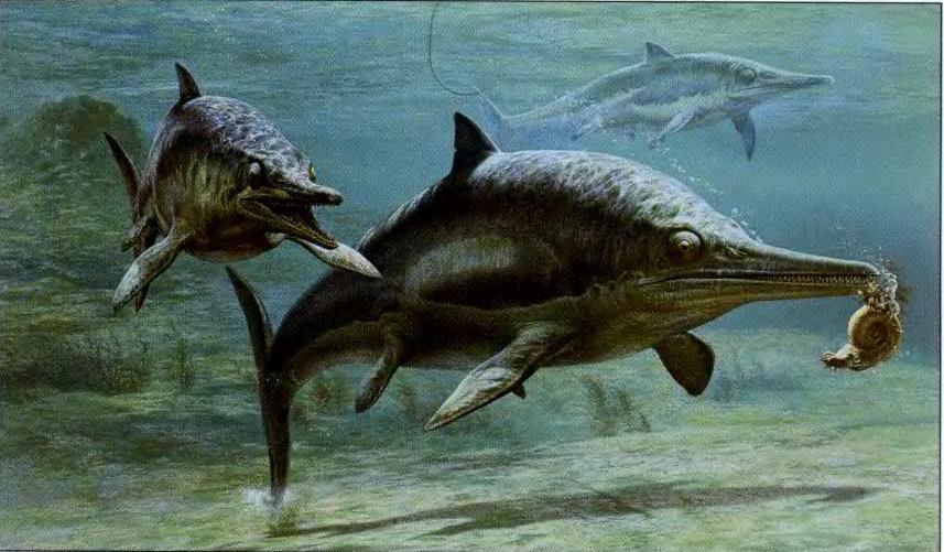 Тайны морских динозавров.