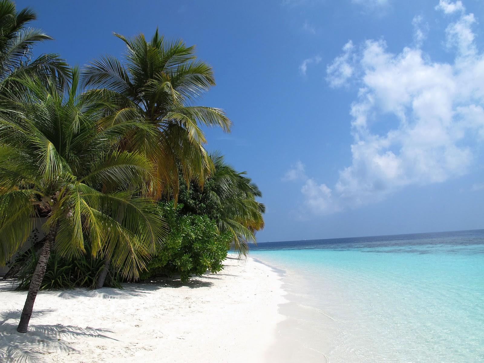 Мальдивы завораживающий Подводный мир