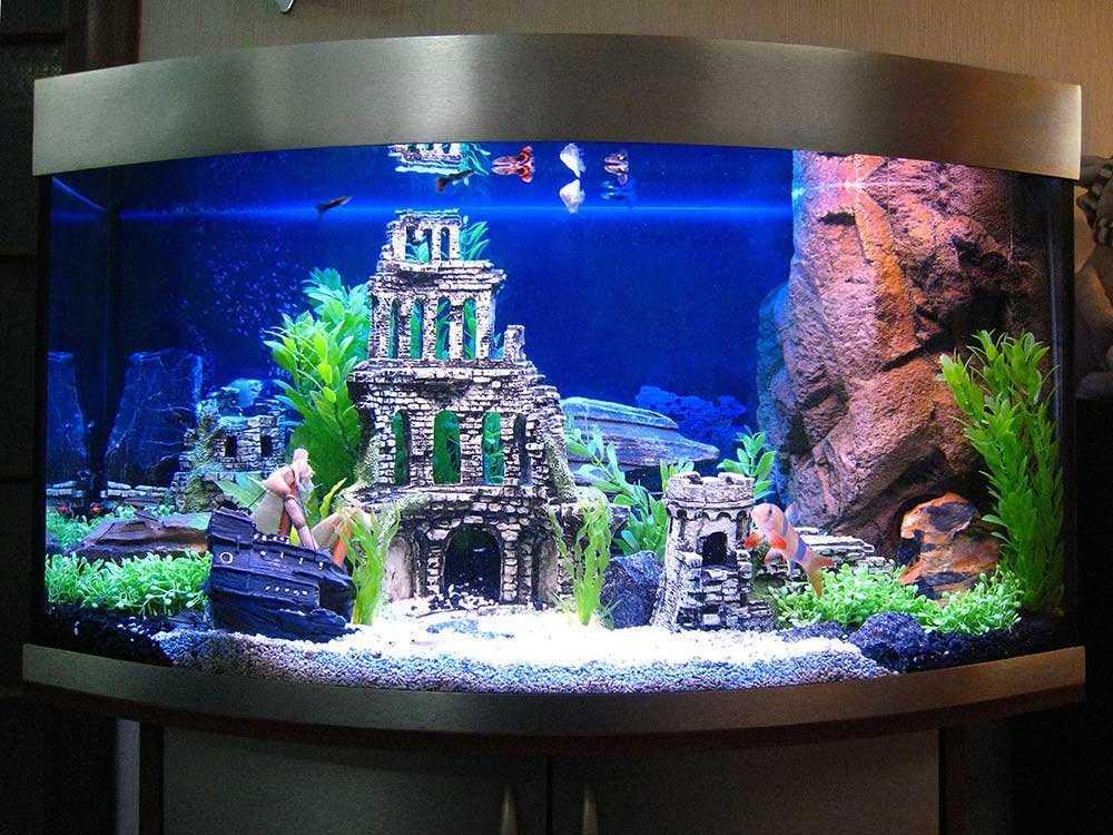 большие аквариумы