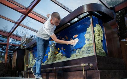 чистка аквариумов фото
