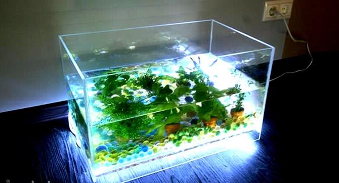 Как сделать подсветку для аквариум 1000