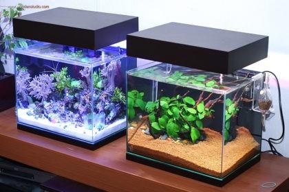 08_aquarium_nano_46