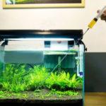 Удобрения для аквариумных растений фирмы Зоомир