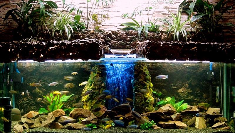 Фитофильтр для аквариума — описание,обзор,фото,видео