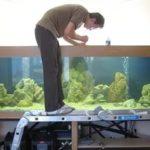 Ремонт аквариумов своими руками в домашних условиях