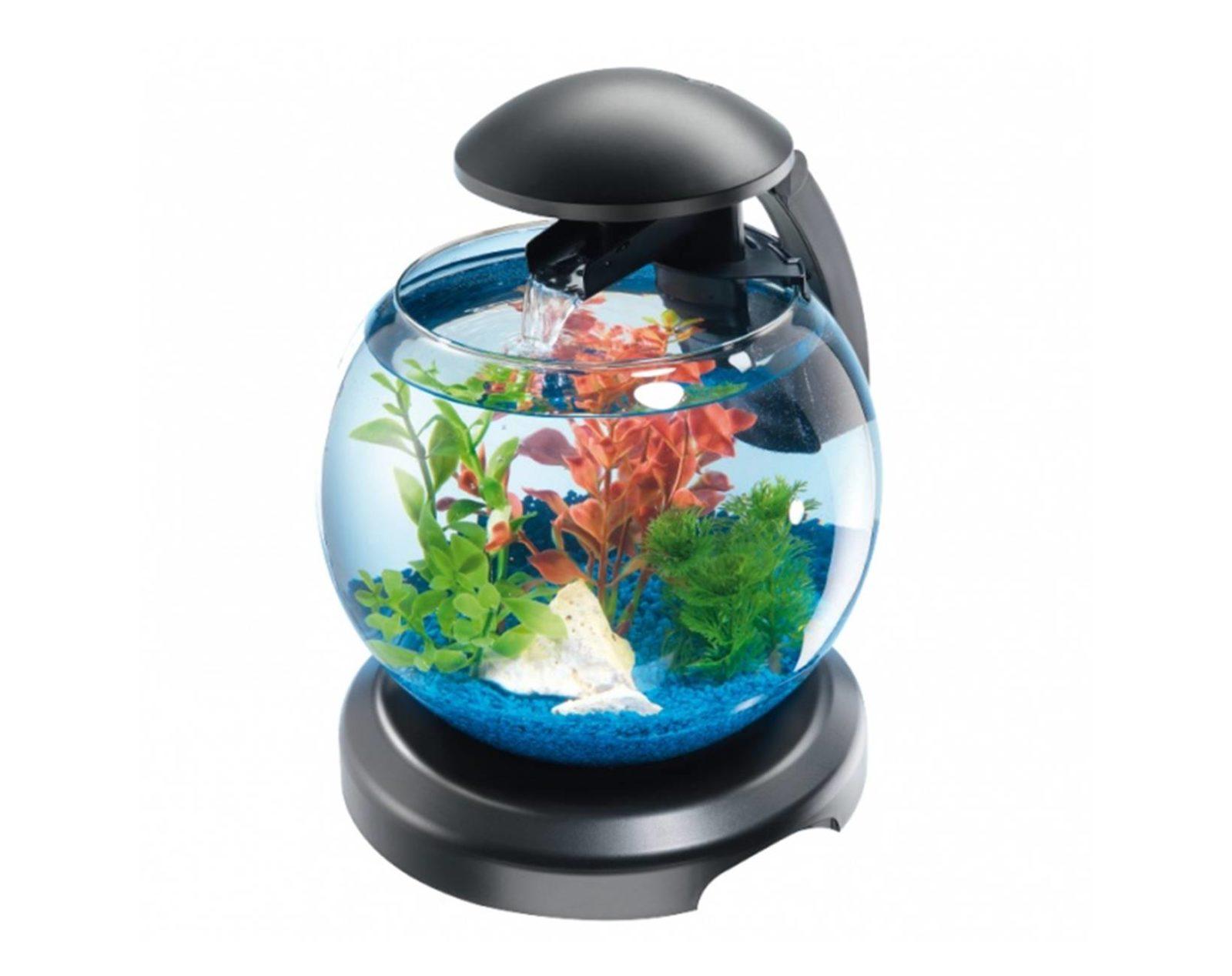 Стоит ли новичкам покупать круглый аквариум маленького объема