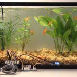 Фильтрование воды в аквариуме