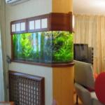 Место аквариума в квартире