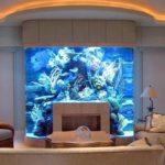 Что надо делать с аквариумом,если в комнате затеян ремонт?