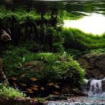 Красивый водопад в аквариуме: видео.