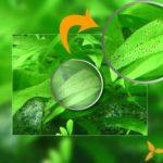 Макроэлементы для аквариумных растений