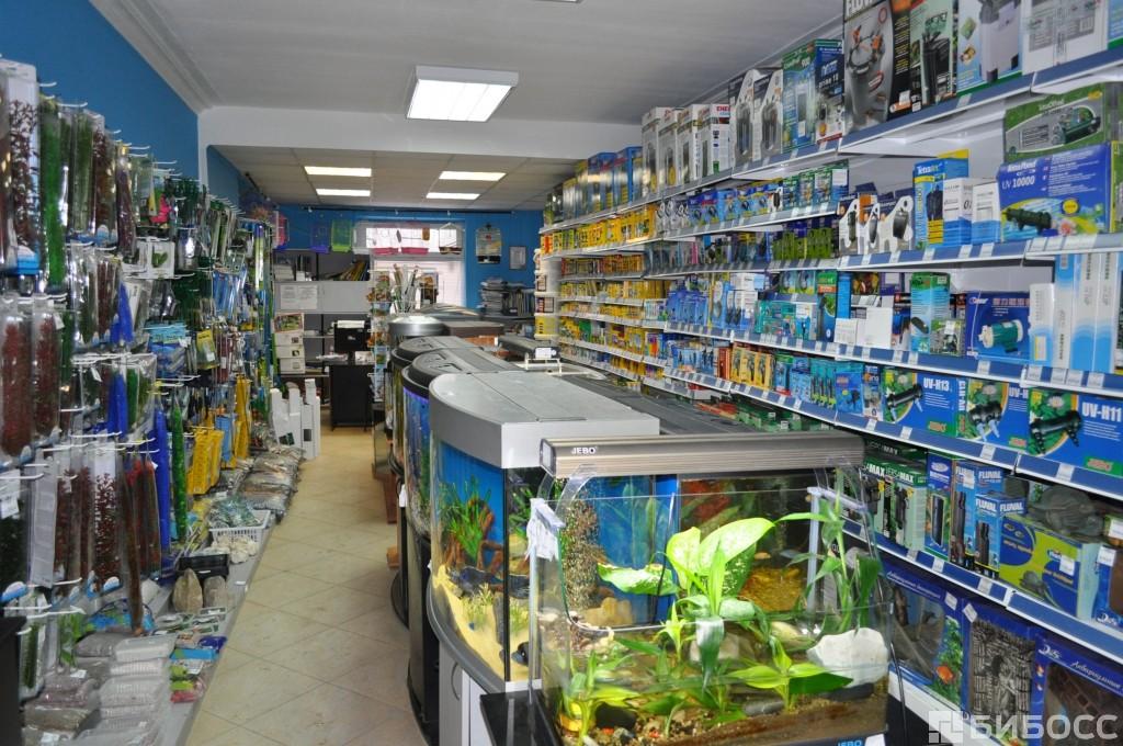 Розничная торговля для аквариумистов