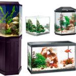 Типы,конструкции и изготовление аквариумов.