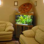 Угловой аквариум:оформление,тумба,уход за тумбой.