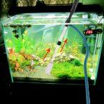 5 Электрических аквариумных сифонов для чистки аквариума с алиэкспресс