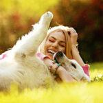 Семь причин, по которым собаки делают нашу жизнь лучше