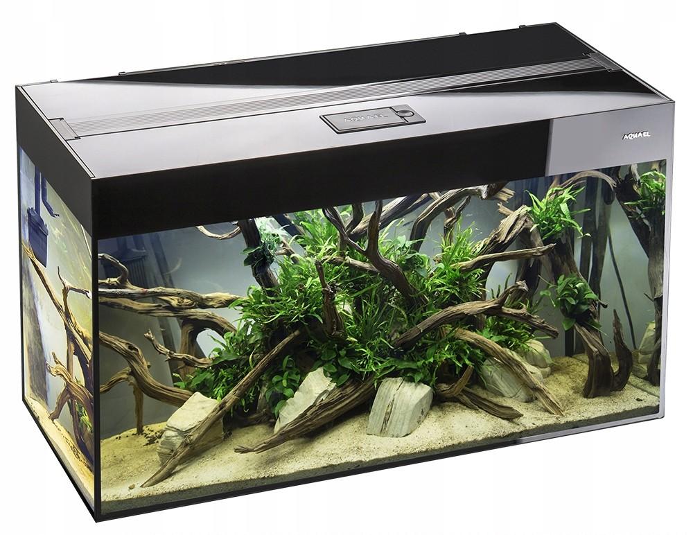 Факторы, которые следует учитывать при выборе аквариума