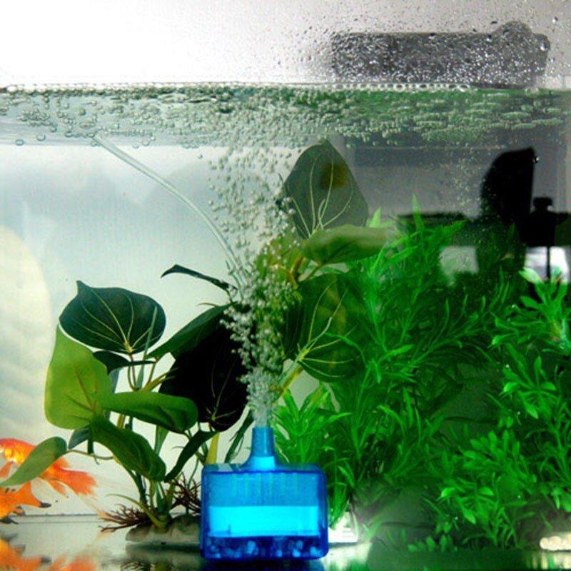 Обзор лучших внутренних фильтров для аквариума на 2020 год