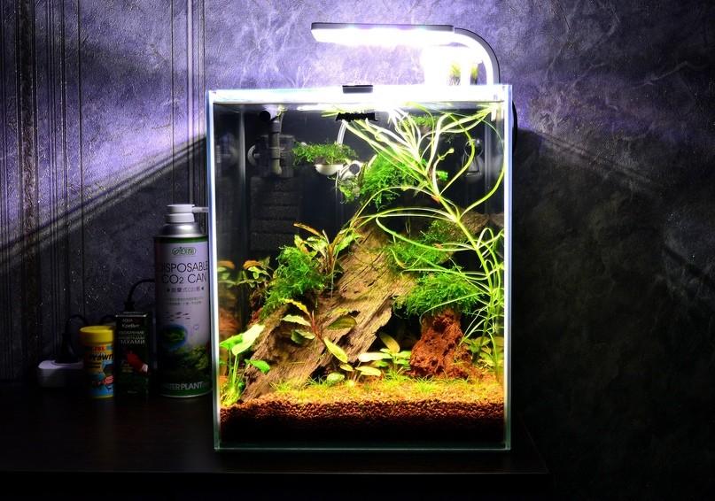 AQUAEL SHRIMP SET SMART PLANT II 30 — обзор